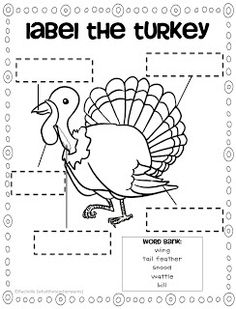 TURKEY downloads and other turkey printables  #homeschool #turkey