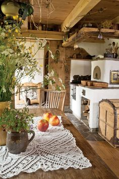 woody kitchen with apples, herby plants and a giant trunk