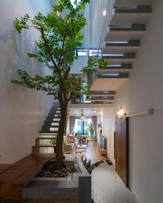 Home decored country living room interior design Ideas Tree Interior, Interior Garden, Interior Design Living Room, Green Architecture, Amazing Architecture, Architecture Design, Indoor Courtyard, Courtyard House, Exterior Design