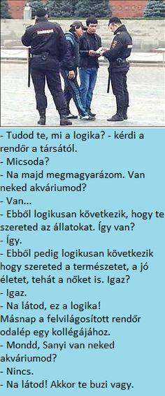 Hungary, Cyberpunk, Haha, Funny Pictures, Jokes, Humor, Fanny Pics, Husky Jokes, Ha Ha