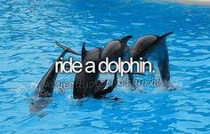 #BucketList - Ride a dolphin.