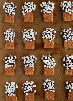 Repinned: S'mores Mini Dippers