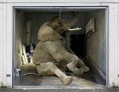 Elephant Garage Door Mural, too funny!