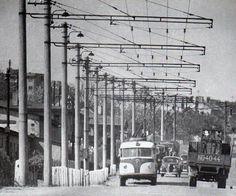 Krejcárek My Heritage, Utility Pole, Historia