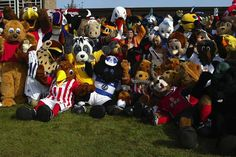 Are you a soccer fan and love their mascots too? Take your pick from the popular English soccer mascots.