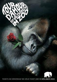kolner-zoo-saint-valentin-publicidad-creativas-02