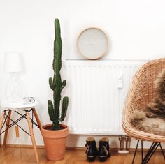 tifmys – Home. Scandi style with cactus and Chloé Susanna boots.