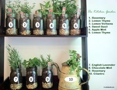 Kitchen Garden: Growing herbs for beauty, food + libations .... Love the info on this blog. Will have to try the grits facial