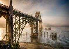 Yaquina Bay Bridge in the Morning Fog