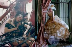 the lion by tim walker