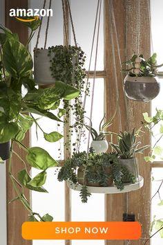Indoor Garden, Indoor Plants, Outdoor Gardens, House Plants Decor, Plant Decor, Hanging Plants, Succulents Garden, My New Room, Garden Projects