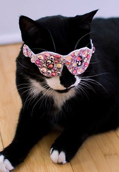 Pink Bling Glasses for Cats by NotsoKittyShop on Etsy, $12.00
