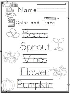 Preschool Printables: Life Cycle of a Pumpkin Fall Preschool, Kindergarten Science, Preschool Curriculum, Preschool Printables, Preschool Lessons, Elementary Science, Science Lessons, Kindergarten Worksheets, Classroom Fun