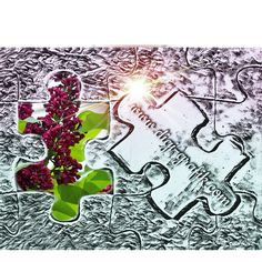 Grafik , idee, Wandbild, Blumen Web Banner, Flyer, Grafik Design, Portrait, Snoopy, Fictional Characters, Inspiration, Art, Pictures