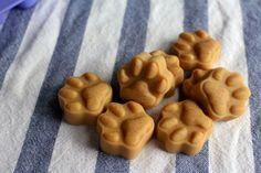 Coconut Oil Peanut Butter Dog Treats