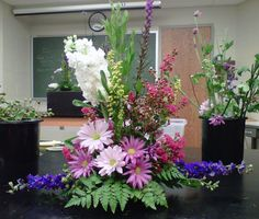Traditional Triangle | Floras in the Fall