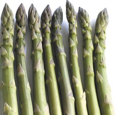 How long does asparagus last? Shelf life, storage tips, expiration dates and more information about asparagus. Find out how to tell if asparagus. Asparagus Seeds, Asparagus Roots, Fresh Asparagus, Grilled Asparagus, Asparagus Recipe, Perennial Vegetables, Fresh Vegetables, Healthy Vegetables, Best Pasta Salad