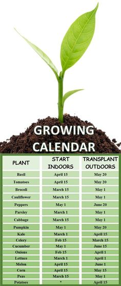 Growing Calendar: When To Plant Your Vegetable Garden