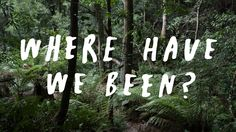 WHERE HAVE WE BEEN? Inspirational Videos, Neon Signs, Health, Health Care, Salud