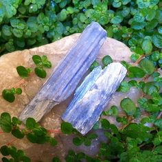 Kyanite (Blue): the supreme transmitter, this stone enhances all forms of communication, especially metaphysical; a bridge builder between planes, this stone aids in telepathic exchanges, accessing angelic messages, and sharpens psychic abilities; this stone harmonizes extremely well with it's sibling colors, and never needs cleansing (as it does not hold negativity). #perspicacityparty #magicgeodes #magicstones #stones #crystals #gems #kyanite #bluekyanite #metaphysics #nofilter