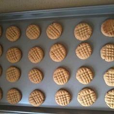 HCG Diet (P3/4) Peanut Butter Cookies
