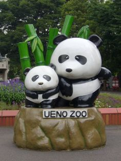 giant pandas at Ueno Zoo is located in Taitō, Tokyo, Japan. It is Japan's oldest zoo, opening on March Japan With Kids, Go To Japan, Japan Trip, Travel Abroad, Asia Travel, Japan Travel, Ueno Zoo, Tokyo Vacation, Ueno Park