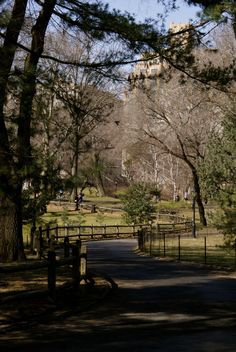 USA - New York - Central park - By: Lisette Eppink