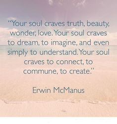 Erwin McManus's quote #1