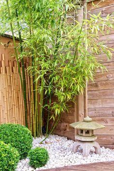 Japanese garden with bamboos and stone lantern Japanischer Garten mit Bambus und Steinlaterne Japanese Garden Backyard, Japanese Garden Landscape, Asian Garden, Small Backyard Gardens, Small Gardens, Backyard Landscaping, Bamboo Garden Ideas, Japanese Gardens, Japanese Garden Lanterns
