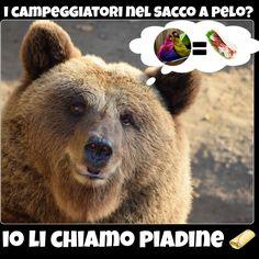 #funny #joke #battute #risate #indovinelli #humor #battute #immaginidivertenti #divertente #ridere #italy #frasi #battutedivertenti #barzellette #illusione #risata #smile #crazy #orso #bear #wild #food #cibo #piada #piadina #piadinaromagnola #saccoapelo #campeggio #campeggiatori #camping