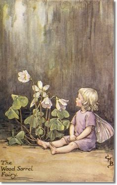 Cicely Mary Barker - Flower Fairies of the Spring - The Wood-Sorrel Fairy Archival Fine Art Paper Print