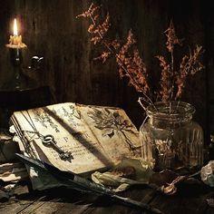 Die Wurzeln des Wissens sind bitter, aber ihre Früchte sind süß. #volkruna #runes #midgard #norse ...
