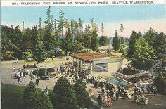 File:Bear exhibit at Woodland Park Zoo, circa Washington State History, Seattle Area, Fountain City, Woodland Park Zoo, Reptile House, Evergreen State, Pony Rides, Pet Cage