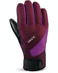 Dakine Gloves : Ski / Snowboard