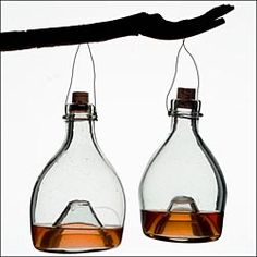 """Traditional Glass """"Wasp Traps"""" Replicas of an antique English design Woodworking Shows, Woodworking Supplies, Wasp Traps, Fly Traps, Outdoor Tools, Outdoor Ideas, Garden Show, Cork Stoppers, Gardens"""