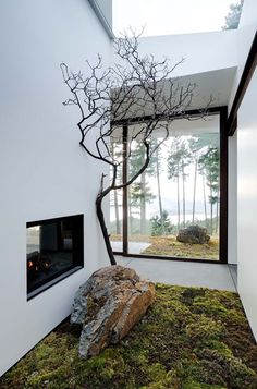 Eagle Ridge Residence by Gary Gladwish Architecture. Indoor rock/moss garden brings a touch of the outdoors inside.