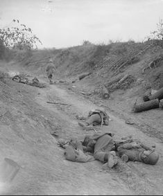 WWI, 2 Sept Battle of the Drocourt-Queant Line. Dead German soldiers in sunken road that was strongly held by machine guns but was taken by the Division. Near Dury. © IWM (Q World War One, First World, Casualties Of War, Hundred Days, Flanders Field, Man Of War, War Photography, Military Personnel, History Photos