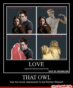 HAHAHAHAHAHA!!!!!!!! The meat has too much expression to be Kristen Stewart!!!!!! hahahaha