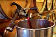 cata-vino-fase-gustativa-3