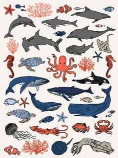 Ocean Animals  Art Print