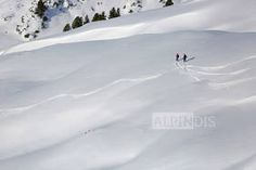 """""""The first line"""" in der Zillertalarena, Königsleiten. Tiefschnee, Kitzbüheler Alpen, Bergführer, Winter www.alpindis.at"""