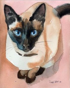 Siamese cat Seal Chocolate Point art Print of my watercolor painting Large Big…