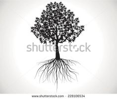 Tree root graphics Free vector for free download about (3) Free ...