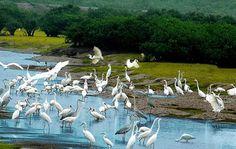 2/9 ĐI THAM QUAN Ở KHU VỰC NÀO GẦN SÀI GÒN http://www.dulich29.net/tin-tuc/2-9-di-tham-quan-o-khu-vuc-nao-gan-sai-gon.html