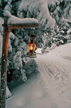 Light the way🕯️ through a Winter Wonderland ❄️ ❄️ ❄️ Erleuchten Sie den Weg durch ein Winterwunderland Winter Szenen, Winter Love, Winter Magic, Winter Christmas, Winter Light, Merry Christmas, Country Christmas, Christmas Time, Snow Light