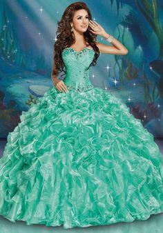 2017 New Organza Quinceanera Dress Pageant Dress Prom Ball Gown Sweet 16 Dress Pretty Quinceanera Dresses, Pageant Dresses, Ball Dresses, Ball Gowns, Flower Girl Dresses, Dress Prom, Pageant Wear, Sweet 16 Dresses, Pretty Dresses