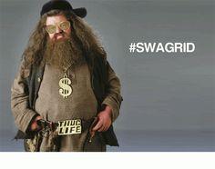 Cool Funny pics         SWAGRID!