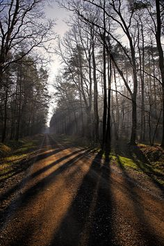Long shadows | Flickr - Photo Sharing!