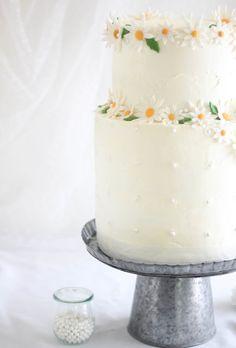 Sprinkle Bakes: Chocolate Celebration Cake for 100