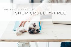 There are multiple options for cruelty-free and vegan shoppers, but I've gathered my favorite online retailers in this one post. Some have promo codes for my readers, and I'll update this frequently with current sales and deals, so keep an eye open! Everyday Essentials 1. Amazon I love Amazon for everything from household products to …